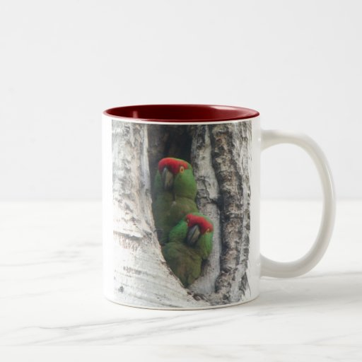 Thick Billed Parrot Mug Right Handled Two Tone Coffee Mug