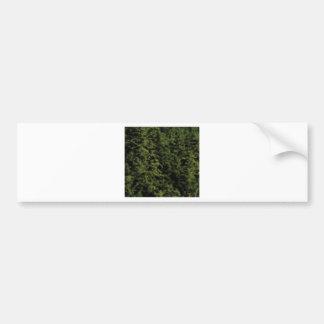 thick green forest bumper sticker