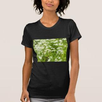 Thickets of medicinal plant Matricaria Chamomilla T-Shirt