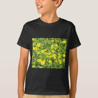 Thickets of small yellow flowers Picris Rigida at T-Shirt