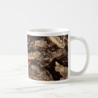 Thin section of fossil calcareous shell fragments coffee mug