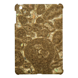 Thin section of Paleozoic limestone under the micr Cover For The iPad Mini