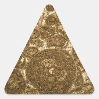 Thin section of Paleozoic limestone under the micr Triangle Sticker