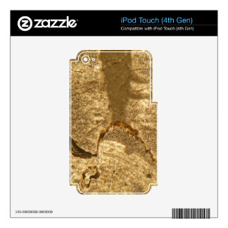Thin section of Triassic carbonate under the micro iPod Touch 4G Decal