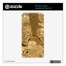 Thin section of Triassic carbonate under the micro Skins For iPhone 4