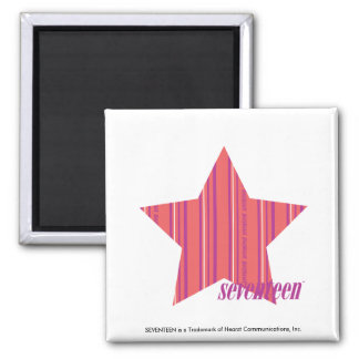Thin Stripes Pink 4 Magnet