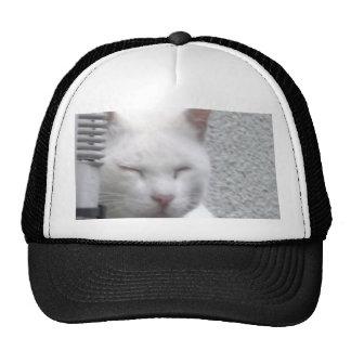 Thin the ya it is in eye margin densely the cap trucker hat