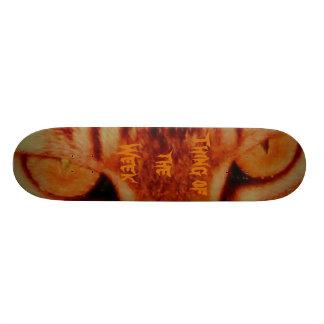 Thing of the Week Skate board