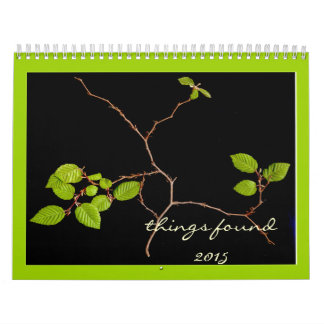 """Things Found"" 2015 Calendar"