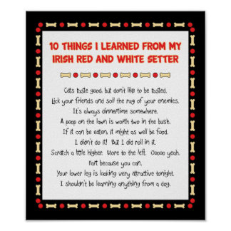Things I Learned From Irish Red and White Setter Poster