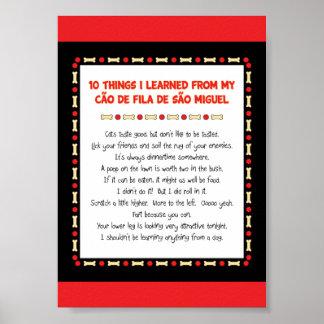 Things I Learned From My Cão de Fila de São Miguel Posters