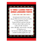 Things I Learned From My German Longhaired Pointer Postcard