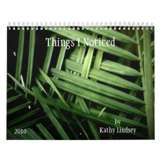 Things I Noticed, by Kathy Lindsey, 2010 Calendar