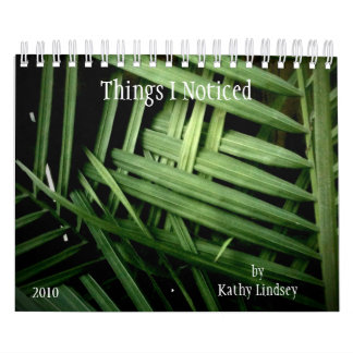 Things I Noticed, by Kathy Lindsey Calendar