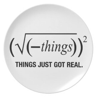 things just got real melamine plate