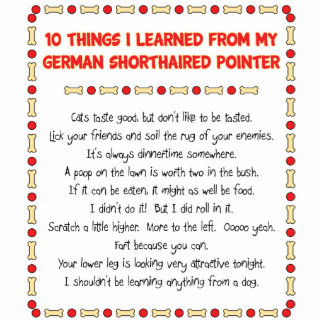 Things Learned From My German Shorthaired Pointer Statuette