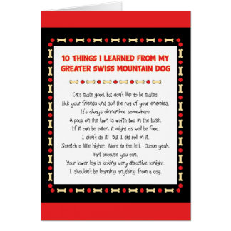 Things Learned From My Greater Swiss Mountain Dog Greeting Cards