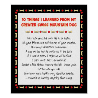 Things Learned From My Greater Swiss Mountain Dog Poster