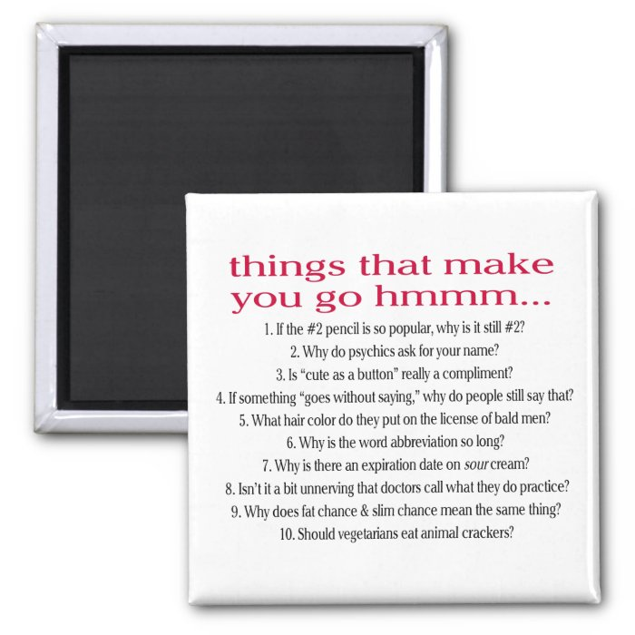 Things that make you go Hmmm Magnet
