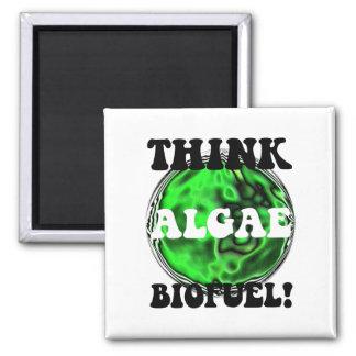 Think algae biofuel! 2 inch square magnet