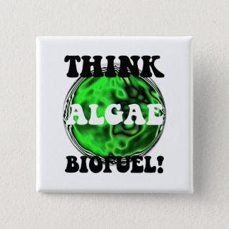 Think algae biofuel! button