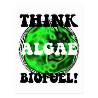 Think algae biofuel! postcard