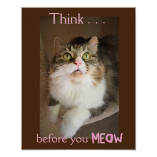 Think Before You Meow (Empathy Poster Print)