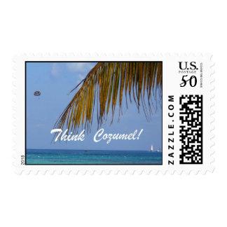 Think Cozumel! Postage