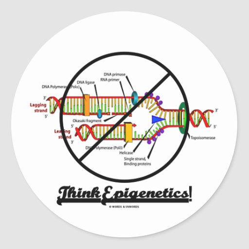 Think Epigenetics! (Cross Out DNA Replication) Round Stickers