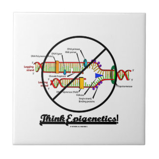 Think Epigenetics! (Cross Out DNA Replication) Tile