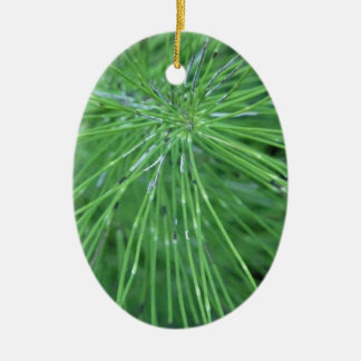 Think Green! by GRASSROOTSDESIGNS4U Double-Sided Oval Ceramic Christmas Ornament