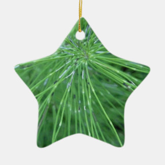 Think Green! by GRASSROOTSDESIGNS4U Double-Sided Star Ceramic Christmas Ornament