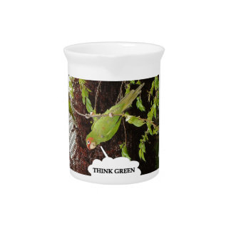 Think Green conure Beverage Pitchers