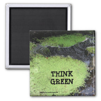 Think Green Pond Magnet