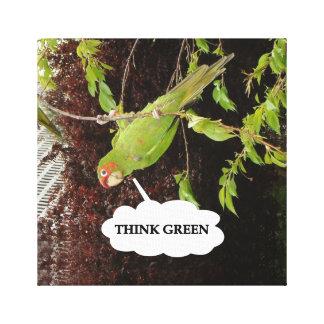 Think Green Red Masked Parakeet Canvas Print