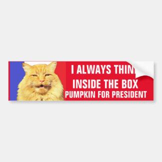 tHINK iNSIDE tHE bOX  Pumpkin for President Bumper Sticker