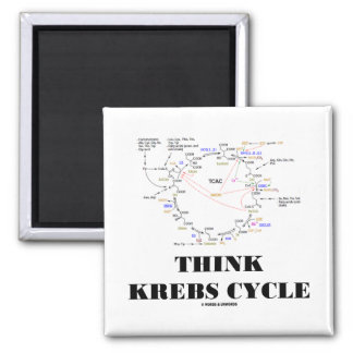 Think Krebs Cycle (Citric Acid Cycle - TCAC) 2 Inch Square Magnet