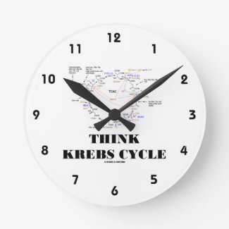 Think Krebs Cycle (Citric Acid Cycle - TCAC) Clocks