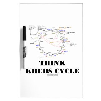 Think Krebs Cycle (Citric Acid Cycle - TCAC) Dry Erase Boards