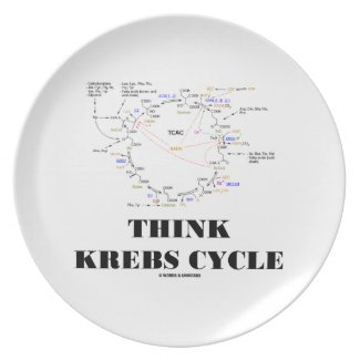 Think Krebs Cycle (Citric Acid Cycle - TCAC) Dinner Plate