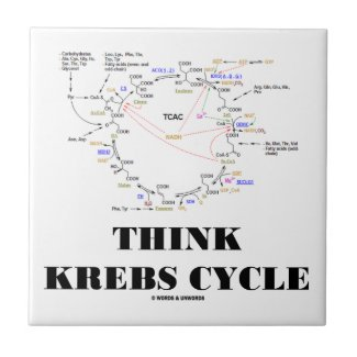 Think Krebs Cycle (Citric Acid Cycle TCAC) Tile