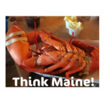 Think Maine! Post Card