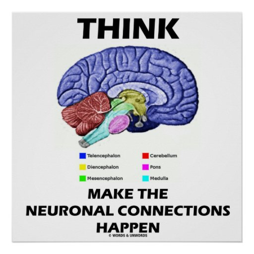 Think Make The Neuronal Connections Happen Print