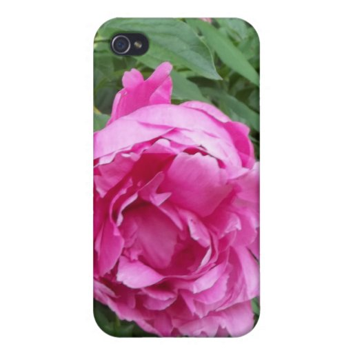 Think Pink Flower iPhone 4 Cover