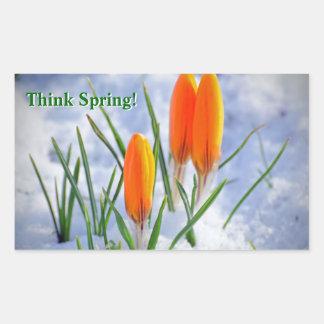 Think Spring! Crocus Flower Pushing Thru Snow Rectangular Sticker