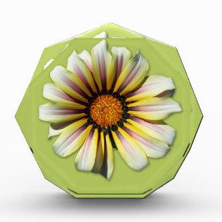 Think Spring Flower Fern Acrylic Award