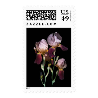 Think Spring Postage Stamps
