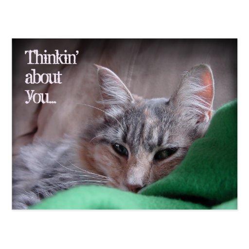 Thinkin sobre usted… tarjetas postales