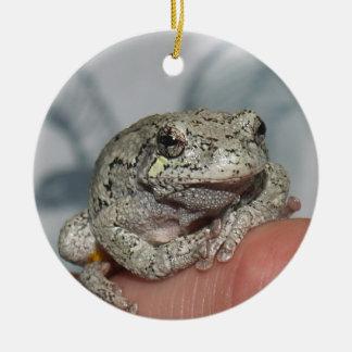 Thinking Frog Ceramic Ornament