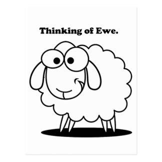 Thinking of Ewe Lamb Sheep Cute Cartoon Postcard